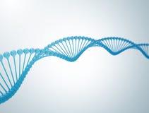 3d脱氧核糖核酸例证 库存照片