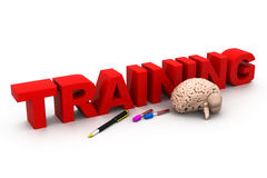 3d与人脑和笔的世界训练 免版税库存图片