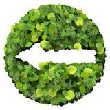 由绿色叶子做的箭头被隔绝在白色背景 3d回报 免版税库存照片