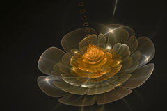 3D abstract fractal flower computer generated image. Background design Royalty Free Stock Photos