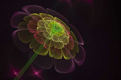 3D abstract fractal flower computer generated image. Background design Stock Images