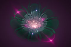 3D abstract fractal flower computer generated image Royalty Free Stock Photos