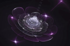 3D abstract fractal flower computer generated image Royalty Free Stock Photography