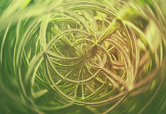 3D abstract geometric glass spirals Stock Photo