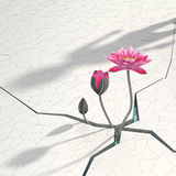 3d abstract. 3d lotus in abstract background Stock Photography