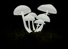 3d Abstract mushrooms on a black background Royalty Free Stock Photo