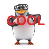 3d Academic penguin is cool. 3d render of a penguin in glasses holding up the word Cool Royalty Free Stock Photography