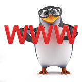 3d Academic penguin holding WWW in his hands. 3d render of a penguin holding the acronym WWW in his hands Stock Photography