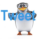 3d Academic penguin makes a bird noise. 3d render of a penguin holding the word Tweet Royalty Free Stock Photo
