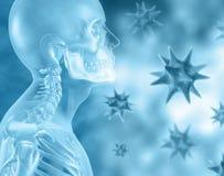 3D achtergrond met medische skelet en viruscellen Stock Foto