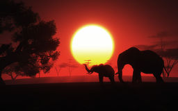 3D African landscape with elephants at sunset. 3D render of an African landscape with elephants at sunset Royalty Free Stock Photography