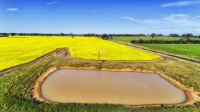 D Agri油菜风车坑 库存照片