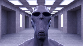 3d alien portrait. 3d futuristic SCIFI alien portrait Stock Photos