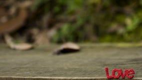 ` d'AMOUR de ` de mot de lettres sur le plancher en bois Images libres de droits