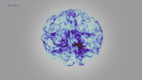 Inside the Brain of Blue IR Neuron system