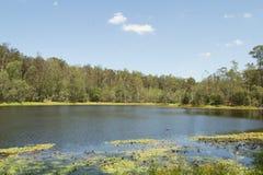 D'anguilar国家公园湖  库存照片