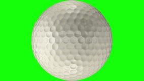 3D animacja piłki golfowej kołysanie się przez przejrzystego tło ilustracja wektor