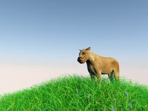 3d animal in the medow Royalty Free Stock Photo