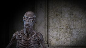 3D Animation of creepy Ghoul stock footage