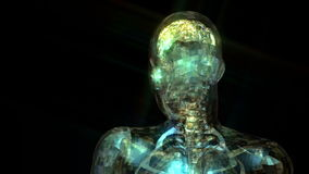 3D Animation of the human Anatomy stock video footage