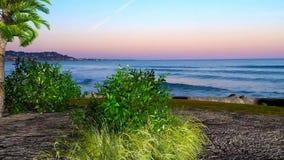 3D animou a paisagem da árvore e dos arbustos no céu do por do sol do undet da praia ilustração do vetor