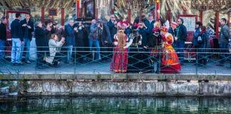 D Annecy 2012 di Venitien di carnevale Fotografie Stock