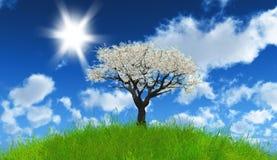 3D apple tree on grassy landscape Stock Images