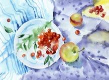 D'aquarelle toujours la vie avec des fruits Images libres de droits