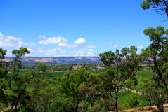 D'Arenberg Winery. Photograph taken at D'Arenberg Winery in the McLaren Vale (South Australia royalty free stock photo