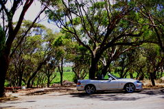 D'Arenberg Winery & MX-5. Photograph taken at D'Arenberg Winery in the McLaren Vale featuring a Mazda MX-5 convertible (South Australia stock photo