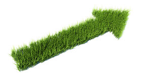 3d arrow made of grass.  Stock Photography