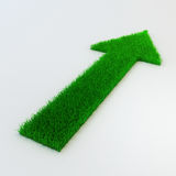 3d arrow made of grass. On white Stock Photos