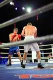 D.Arustamyan versus A.Vastin Stock Foto