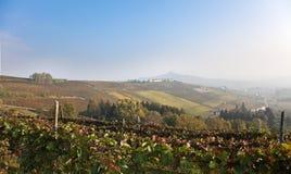 d'Asti van Costigliole (Piemonte, Italië): landschap Stock Afbeeldingen