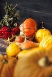 D'automne toujours la vie avec des potirons et des feuilles sur le vieux backgro en bois Photo libre de droits