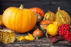 D'automne toujours la vie avec des potirons et des feuilles sur le vieux backgro en bois Image stock