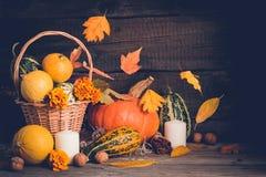 D'automne toujours la vie avec des potirons et des feuilles en baisse thanksgiving Images stock