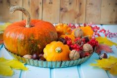 D'automne toujours la vie - potirons, courge, châtaignes, noix, cendre dessus Photographie stock libre de droits