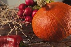 D'automne toujours la vie sur la table en bois Photos libres de droits