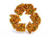 3d Autumn recyclation symbol Royalty Free Stock Images