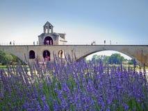 d'Avignon Pont стоковая фотография