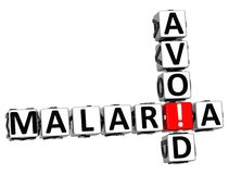 3D Avoid Malaria Crossword text Stock Image