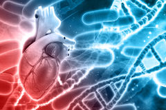 3D background with DNA strands and heart. 3D medical background with DNA strands and heart Stock Photo