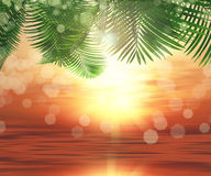 3D background of ferns on sunset ocean background. 3D render of sunlight shining through leaves on a sunset ocean background Stock Photos