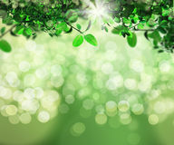 3D background of leaves on bokeh light background. 3D render of sunlight shining through leaves on a bokeh light background Royalty Free Stock Photos