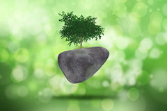 3D background with tree on rock against a defocussed background Royalty Free Stock Photos