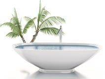 3d badkuip met palm Het concept van de zomer Royalty-vrije Stock Fotografie