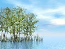 3D bamboe en gras - geef terug Royalty-vrije Stock Foto's