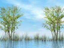 3D bamboe en gras - geef terug Stock Afbeeldingen