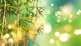 3D bamboo on a bokeh lights background. 3D render of bamboo on a bokeh lights background Royalty Free Stock Images